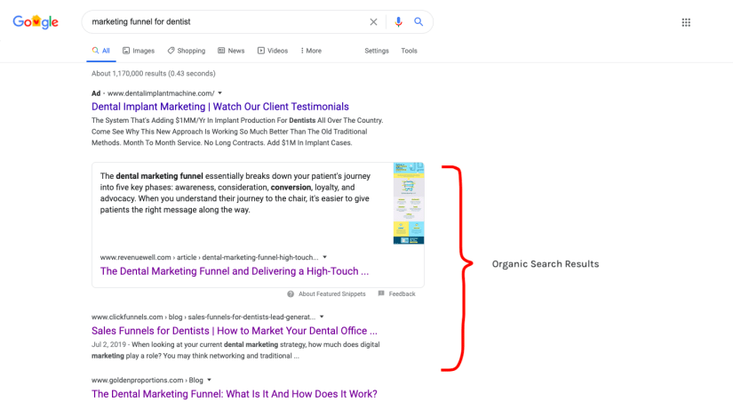 Google Organic Search Results