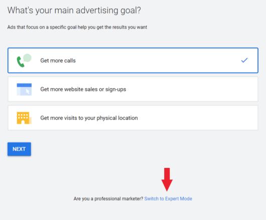 Google Advertising Goal