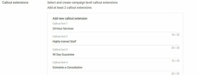 Example of Callout Extension Copy