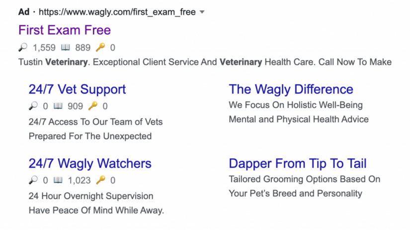 google ads for veterinarians ad extensions example