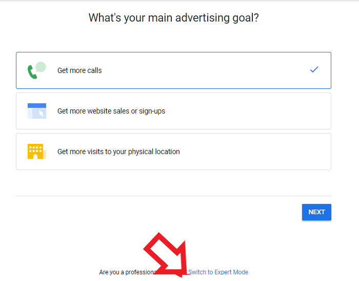 select a main ppc goal